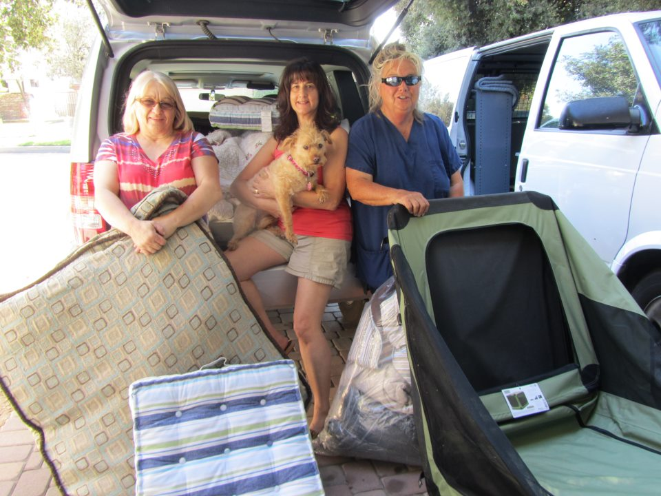 Happy dog rescues receiving tons of pet beds and carriers and more.
