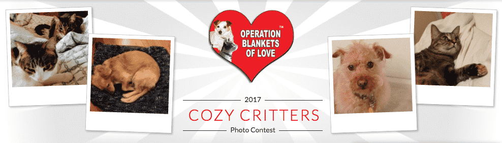 CozyCritters