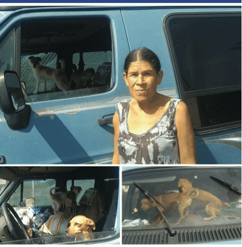 OBOL donated food, toys and blankets to homeless woman living with 6 dogs in a her car.